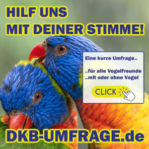 DKB Umfrage 23